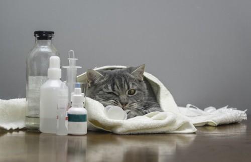 薬の前で寝転ぶ猫