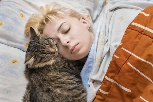 女性の顔に寄りかかって寝る猫