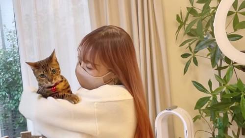 抱っこされる赤い首輪の猫