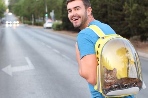 散歩中の男性にしょわれる猫