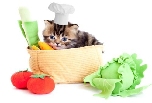 さまざまな野菜と仔猫