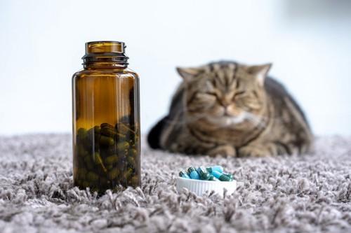 薬瓶の近くにいる猫