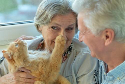 猫を抱く老女と笑顔の老人