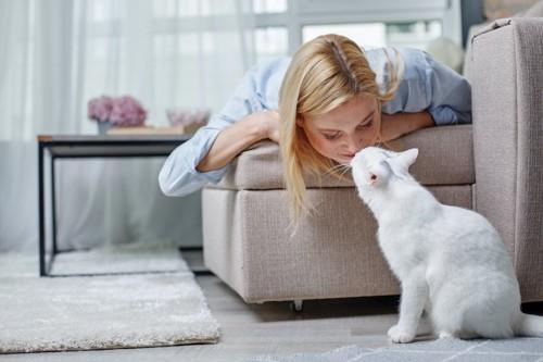 ソファーの上の女性と鼻チューをする猫