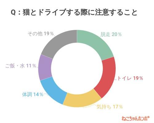 アンケート結果円グラフ