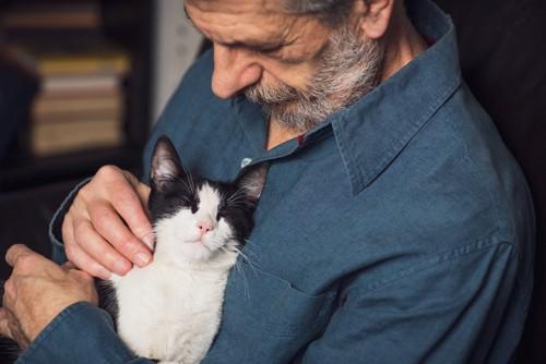 男性に抱かれて撫でられる猫