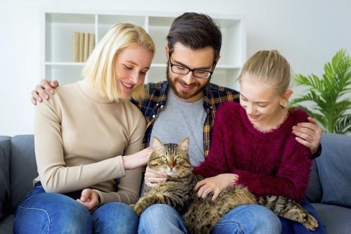 ソファーで猫を可愛がる家族