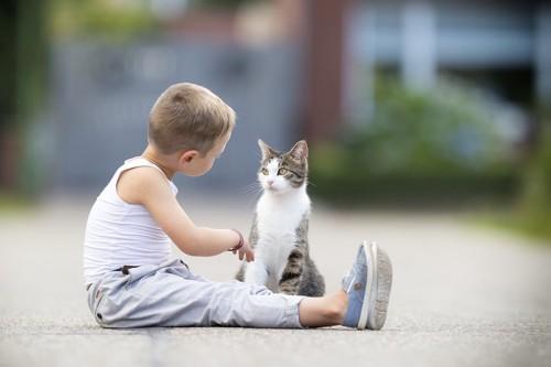 道に座って猫に話しかけている男の子