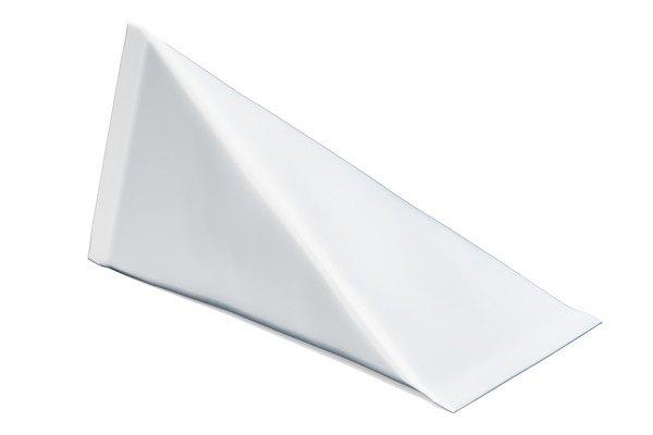 三角で白いテトラ