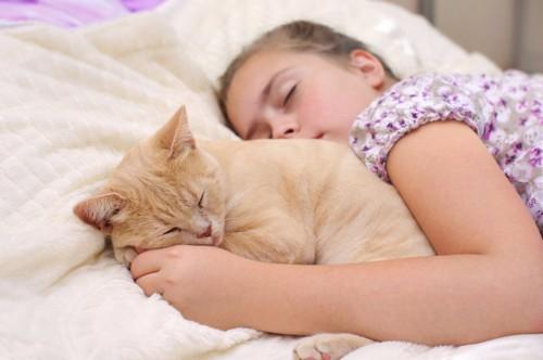 女の子の顔のそばで眠る猫