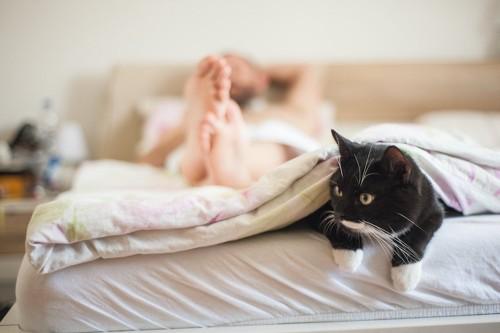 ベッドで眠る飼い主の足元から顔を出す白黒の猫
