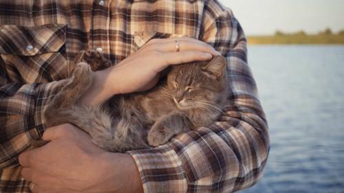 飼い主に抱きしめられている猫
