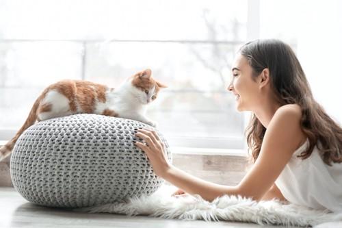 クッションの上に乗った猫を見つめる女性