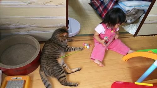 猫と座っている赤ちゃん
