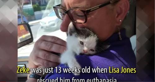 子猫を抱く女性
