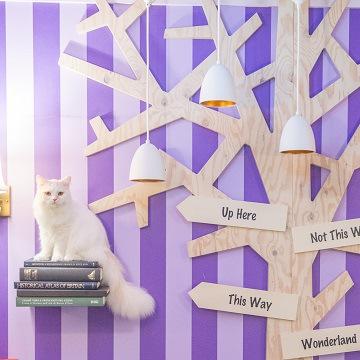 紫のストライプの壁