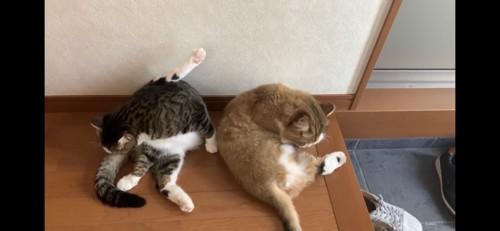 足をあげる