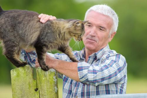 屋外で猫を抱っこしようとしている男性