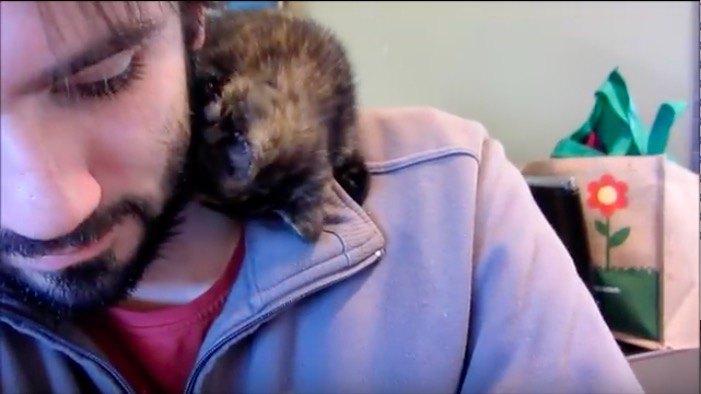 男性に子猫がキス
