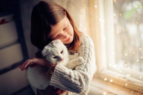 くっつく女の子と猫