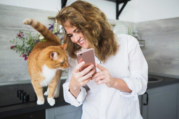 162251039 猫とスマートフォンを覗く女性の写真