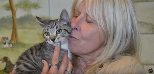キジトラ猫に顔を寄せる女性