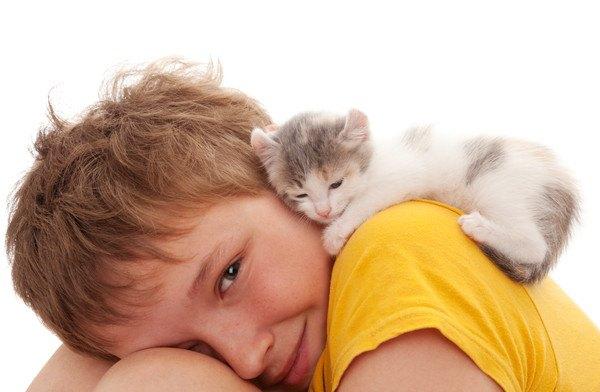 子供と子猫