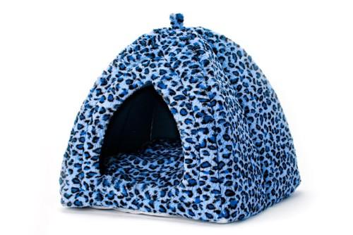 青いヒョウ柄の猫ドーム