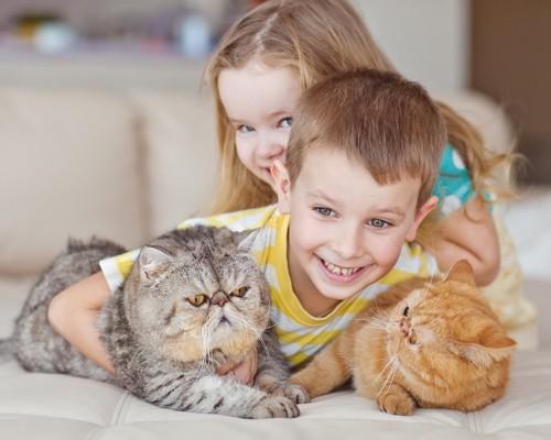 二匹の猫を可愛がる男の子と女の子