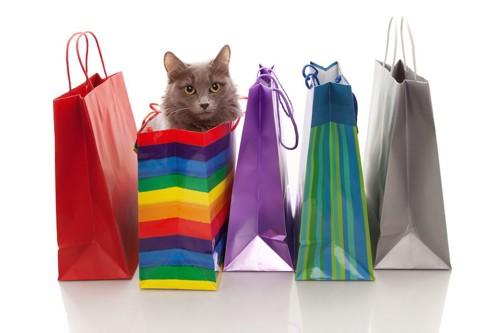 様々な柄の紙袋と中に入った猫