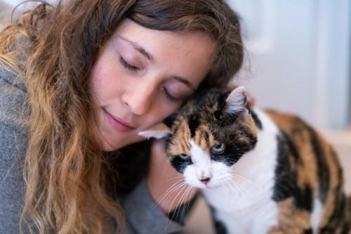 女性に頭を擦り付ける猫