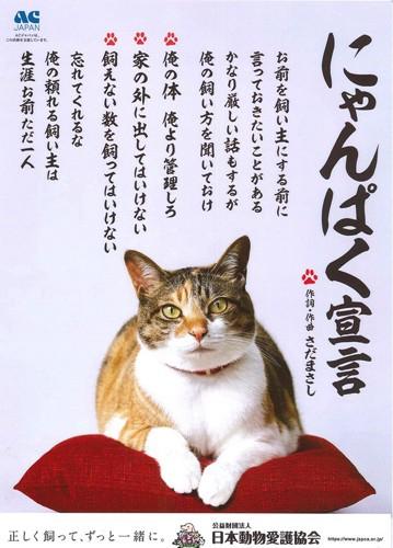 #にゃんぱく宣言ポスター#