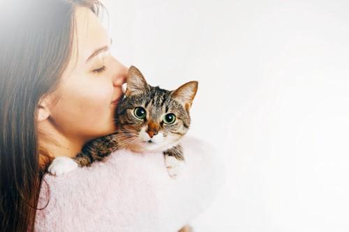 猫を可愛がる飼い主