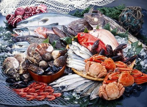 魚や貝、甲殻類などの魚介類が置かれている