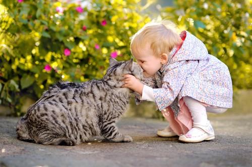 キスする子供と猫