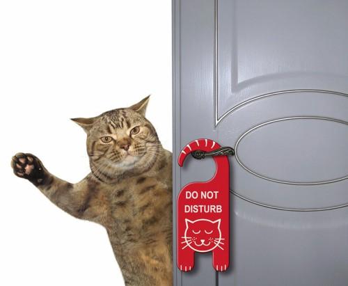 「起こさないで下さい」のプレートかけたドアから顔をのぞかせて手を上げている猫