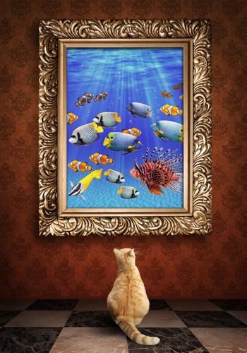 絵を見る猫