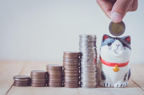 猫にかかるお金のイメージ