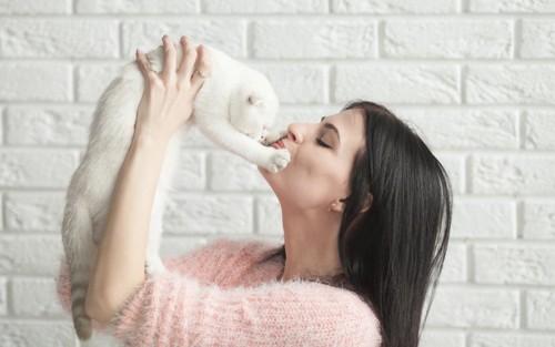 女性の顔にパンチ気味の猫