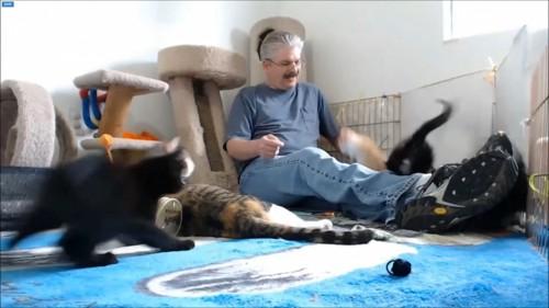 驚く手前の黒猫