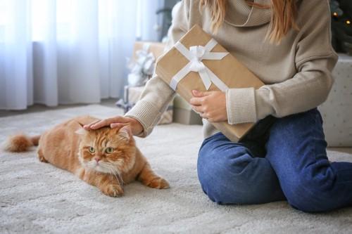 贈り物を持つ女性と猫