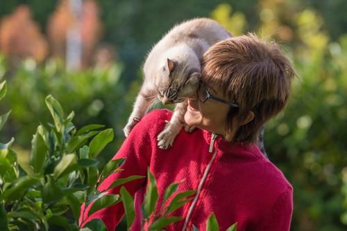 女性の肩にしがみつく猫