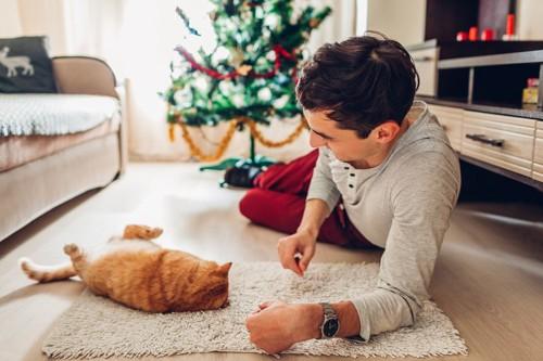 猫に話しかける男性