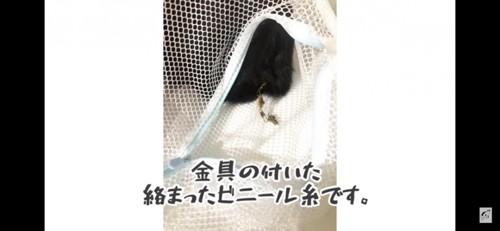 ビニール糸