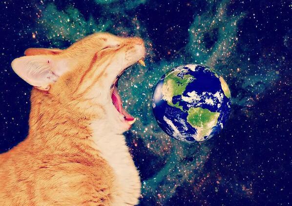 地球を食べる猫