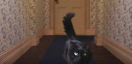 廊下を歩くアウルキティ