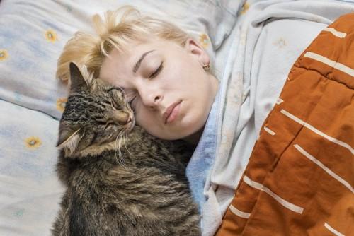人の顔にくっついて寝る猫