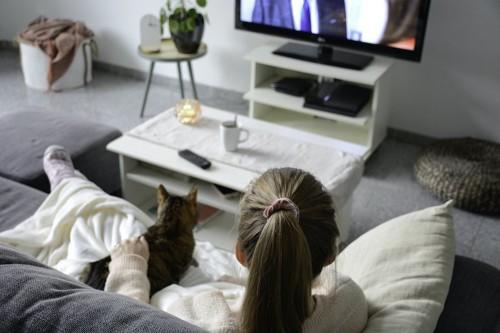 ソファーで猫を撫でながらテレビを観る飼い主