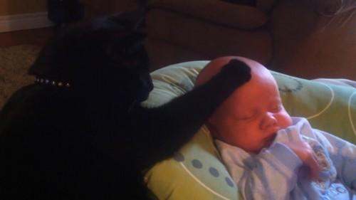 泣き止む赤ちゃん