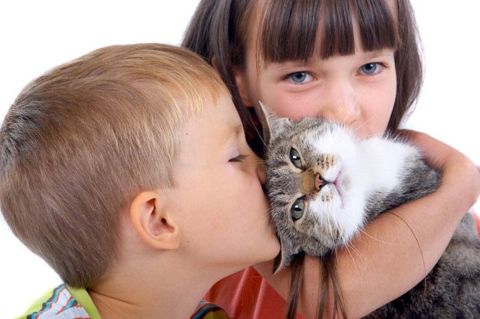 2人の子供に抱かれる猫
